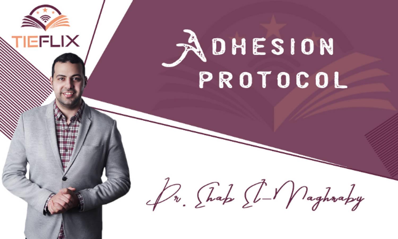 All Ceramic Restorations (Adhesion Protocols)