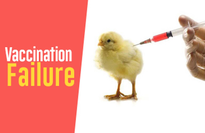 Vaccination Failure