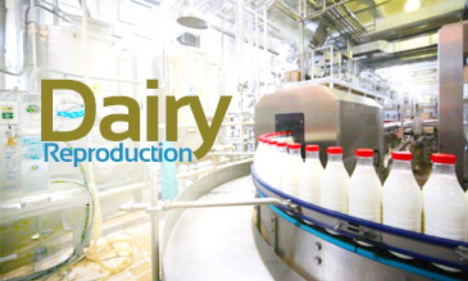 Dairy Reproduction